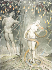Gallery print  Adam and Eve - William Blake