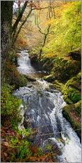 Gallery print  Lynmouth river woodland - Keith Wheeler