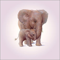 Wall sticker  Elephant & Calf - John Butler