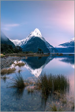 Wall sticker  Landscape: sunrise at Milford Sound, Fjordland National park, New Zealand - Matteo Colombo