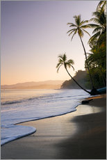 Gallery print  Surf at a palm beach, Costa Rica - Matteo Colombo
