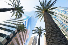 Gallery print  Downtown, Los Angeles, California, United States of America, North America - Gavin Hellier