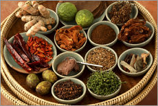 Gallery print  Spices from the Thai cuisine - Luca Tettoni
