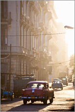 Wall sticker  Oldtimers in Havana - Lee Frost