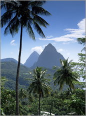 Gallery print  The Pitons, St Lucia - John Miller