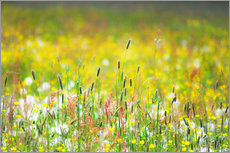 Wall sticker  Spring Meadow - Suzka
