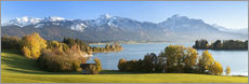 Gallery print  Lake Forggensee and the Alps - Markus Lange