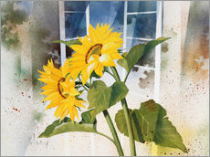 Wall sticker Sunflowers