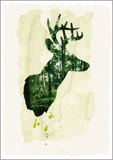 Gallery print  The stag - Sybille Sterk