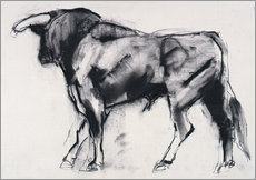 Gallery print  Bull - Mark Adlington