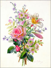 Gallery print  A Pink Bouquet - Albert Williams