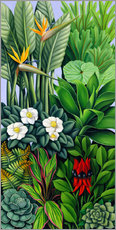 Gallery Print  FOLIAGE II - Catherine Abel