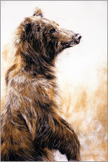 Gallery print  Grizzly Bear - Odile Kidd