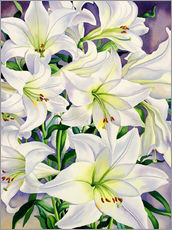 Wall sticker  White lilies, 2008 - Christopher Ryland