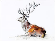Wall sticker Lying Stag