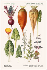 Gallery print  Beetroot and other vegetables - Elizabeth Rice