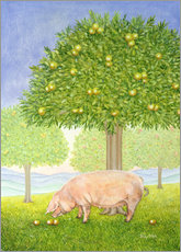 Wall sticker  Orchard Pig - Ditz
