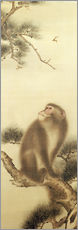 Wall Stickers  Monkey watching a dragonfly - Japanese School