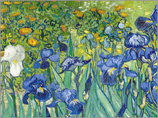 Wall sticker  Irises - Vincent van Gogh