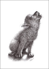 Wall sticker  Young Howling Wolf - Stefan Kahlhammer