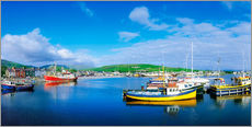Wall sticker  Dingle Harbour, Ireland - The Irish Image Collection