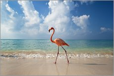 Wall sticker  Flamingo on the beach - Ian Cuming