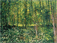 Wall sticker  Trees and Undergrowth - Vincent van Gogh