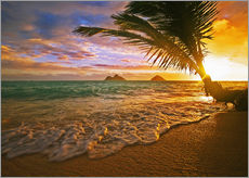 Gallery print  Lanikai Beach at sunrise - Tomas del Amo