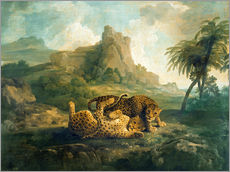 Wall sticker  Leopards at Play - George Stubbs