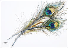 Gallery print  Two peacock feathers - Tara Thelen