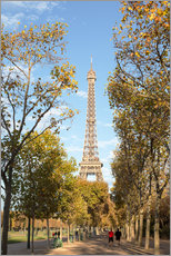 Gallery print  Eiffel tower in autumn, Paris, France - Matteo Colombo