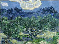 Gallery print  Olive Trees with the Alpilles in the Background - Vincent van Gogh
