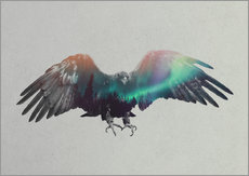 Wall sticker  Eagle In The Aurora Borealis - Andreas Lie
