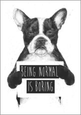 Wall sticker  Being normal is boring - Balazs Solti