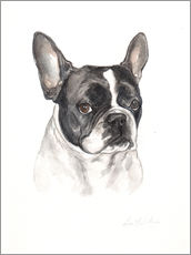 Wall sticker  French bulldog, black-white - Lisa May Painting