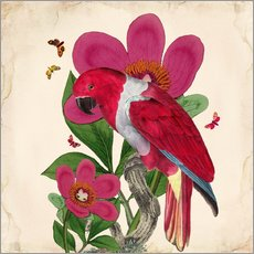 Wall sticker  Oh My Parrot VI - Mandy Reinmuth