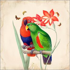 Wall sticker Oh My Parrot I