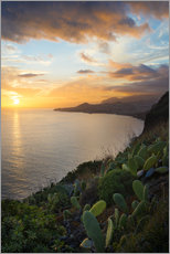 Wall sticker  Bay of Funchal at Sunset, Madeira - Markus Kapferer