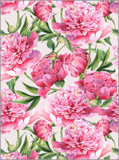 Wall sticker  Pink peonies