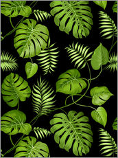 Wall Stickers  Monstera with palms