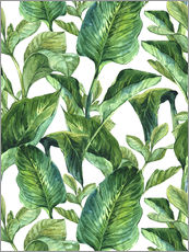 Wall sticker  Tropical Leaves
