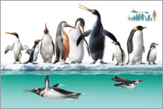 Wall Sticker  Adelie penguins stand on an iceberg - Tom Murphy
