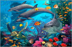 Wall sticker  Secrets Of The Reef - Steve Read