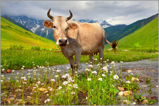 Wall sticker  Cattle on a mountain pasture