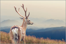 Wall Stickers  Deer standing on the mountain