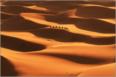 Wall sticker  Sahara desert