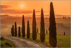 Wall sticker  Golden Morning - Tuscany - Achim Thomae