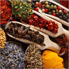 Gallery print  Colorful Spices and Herbs