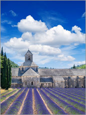 Wall sticker  Sénanque abbey with lavender field, Provence, France