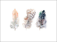 Wall Sticker  3 feathers - Verbrugge Watercolor